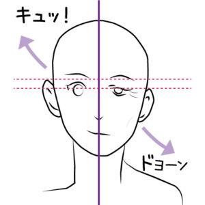 耳の位置が移動