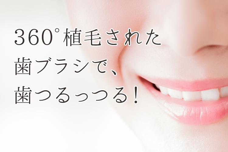 360°植毛された歯ブラシで、歯つるっつる!