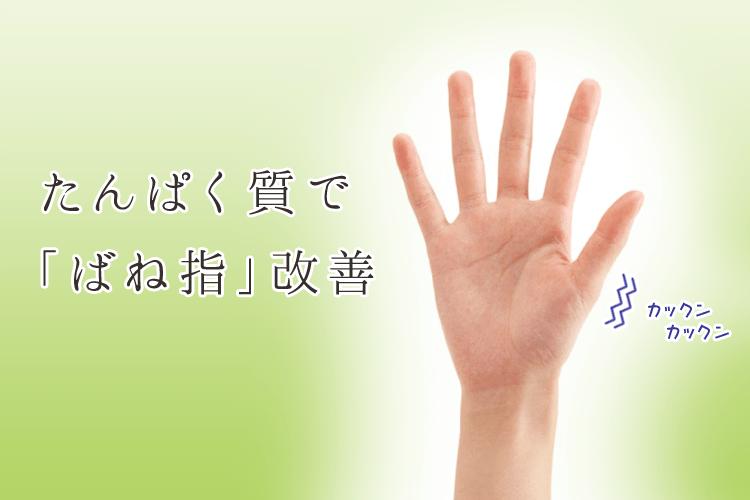 たんぱく質で「ばね指」改善